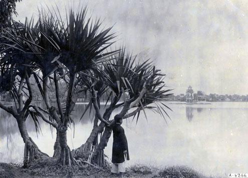 Bờ hồ Hoàn Kiếm