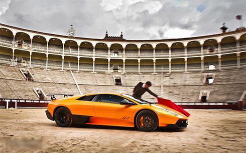 Siêu xe Lamborghini làm bò tót-3