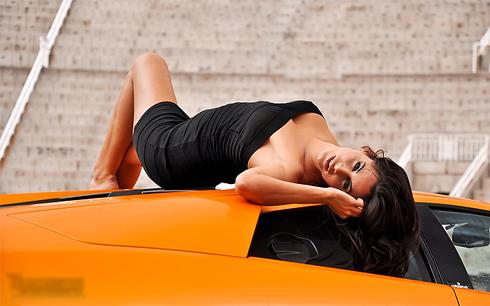 Siêu xe Lamborghini làm bò tót-7