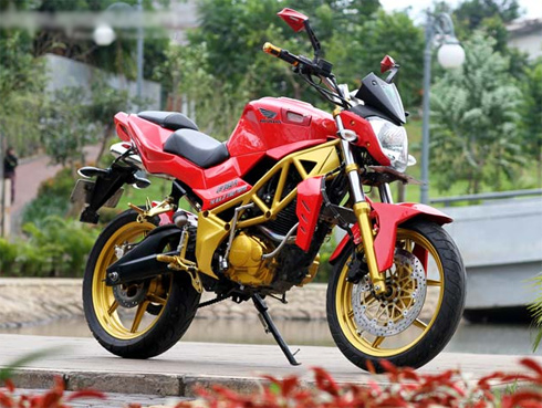 honda-tiger-do-phong-cach-streetfighter-1